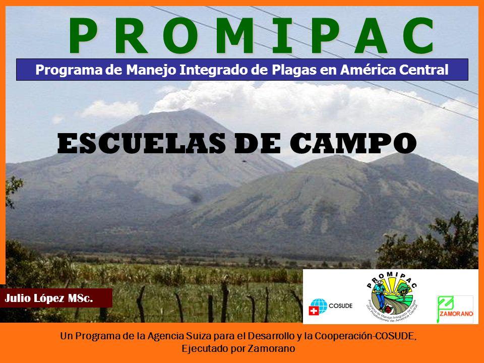 Programa de Manejo Integrado de Plagas en América Central