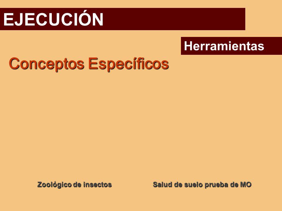 EJECUCIÓN Conceptos Específicos Herramientas Zoológico de insectos