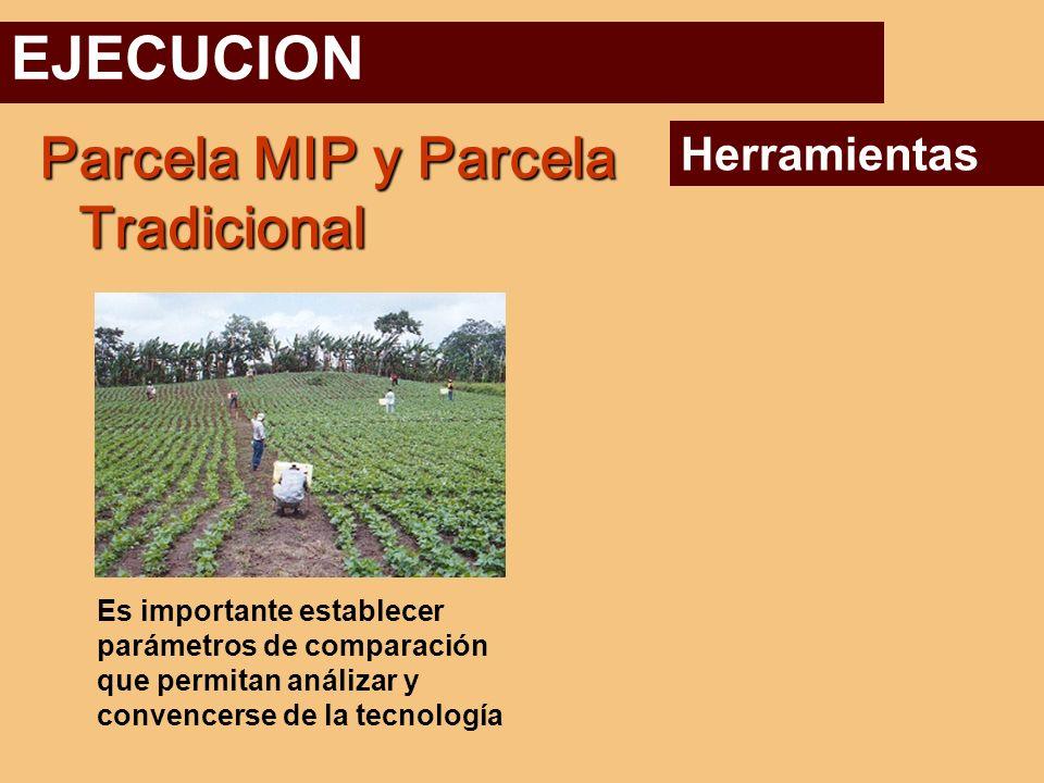 EJECUCION Parcela MIP y Parcela Tradicional Herramientas