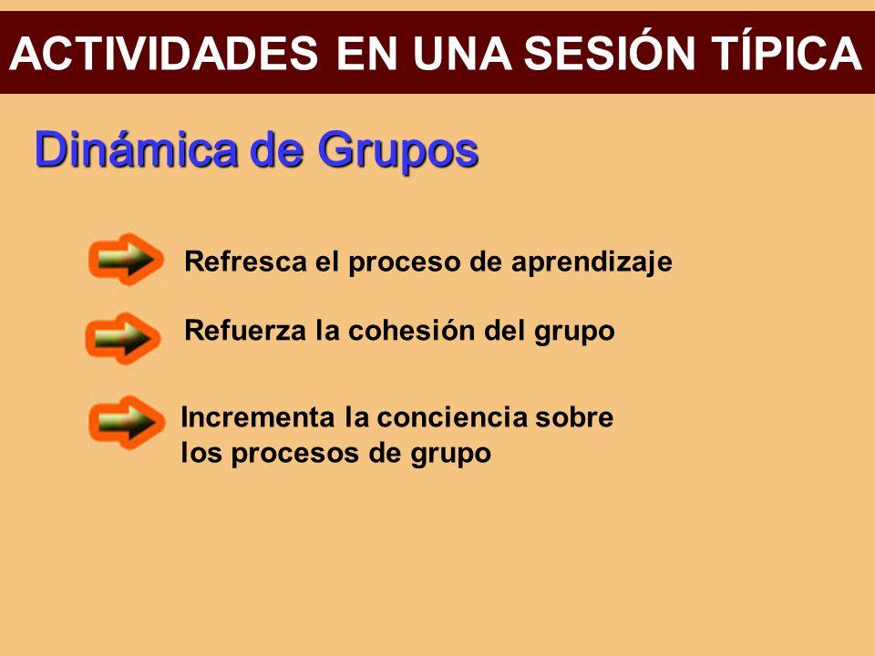 Dinámica de Grupos ACTIVIDADES EN UNA SESIÓN TÍPICA