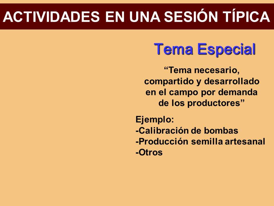 Tema Especial ACTIVIDADES EN UNA SESIÓN TÍPICA