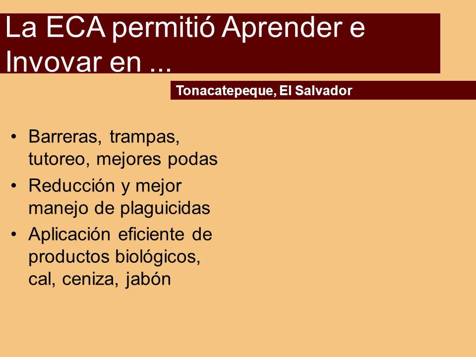 La ECA permitió Aprender e Invovar en ...