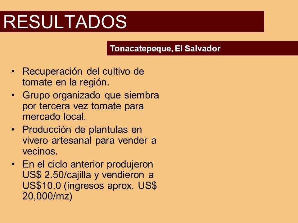 RESULTADOS Recuperación del cultivo de tomate en la región.