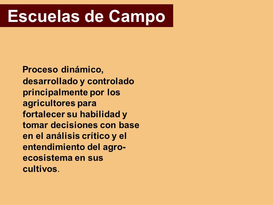 Escuelas de Campo