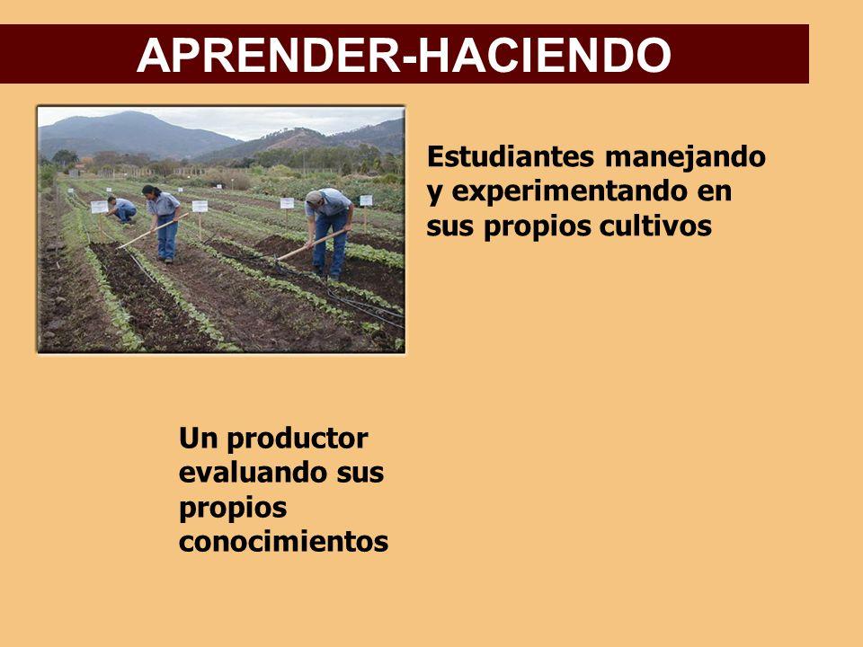 APRENDER-HACIENDO Estudiantes manejando y experimentando en sus propios cultivos.