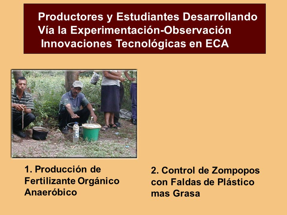 Productores y Estudiantes Desarrollando