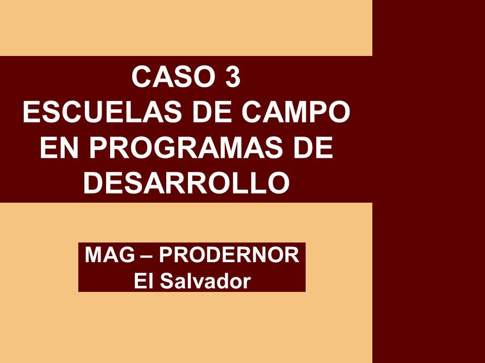 EN PROGRAMAS DE DESARROLLO MAG – PRODERNOR El Salvador