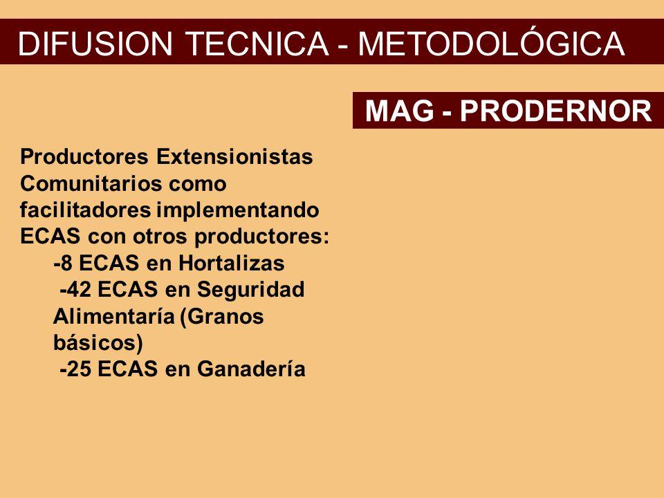 DIFUSION TECNICA - METODOLÓGICA