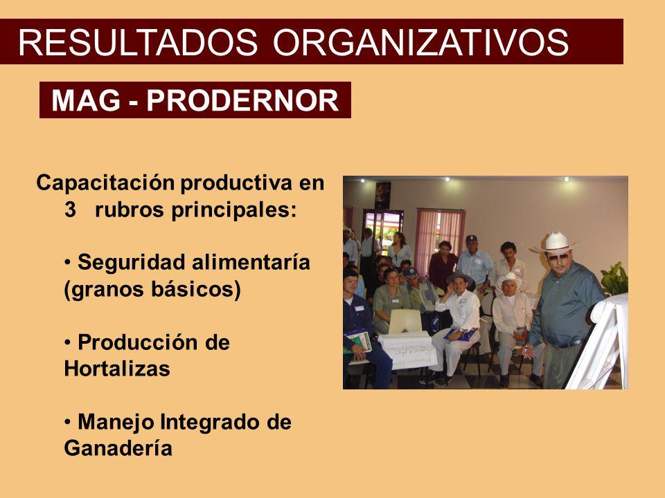 Capacitación productiva en 3 rubros principales: