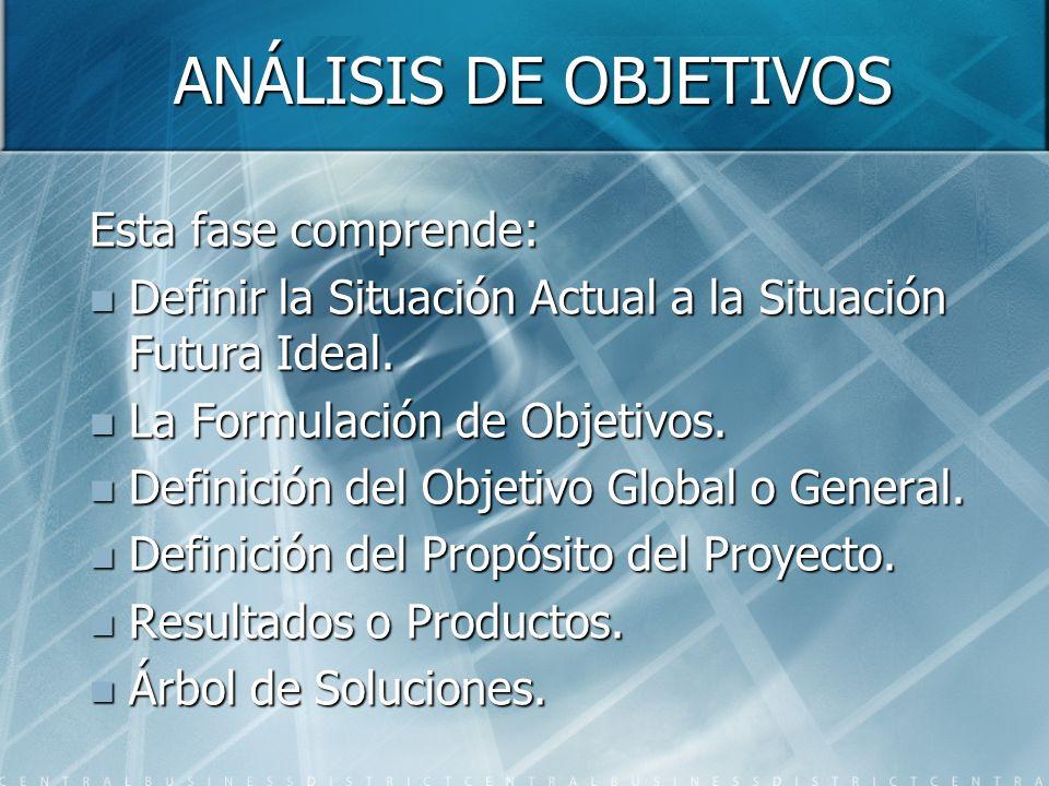 ANÁLISIS DE OBJETIVOS Esta fase comprende: