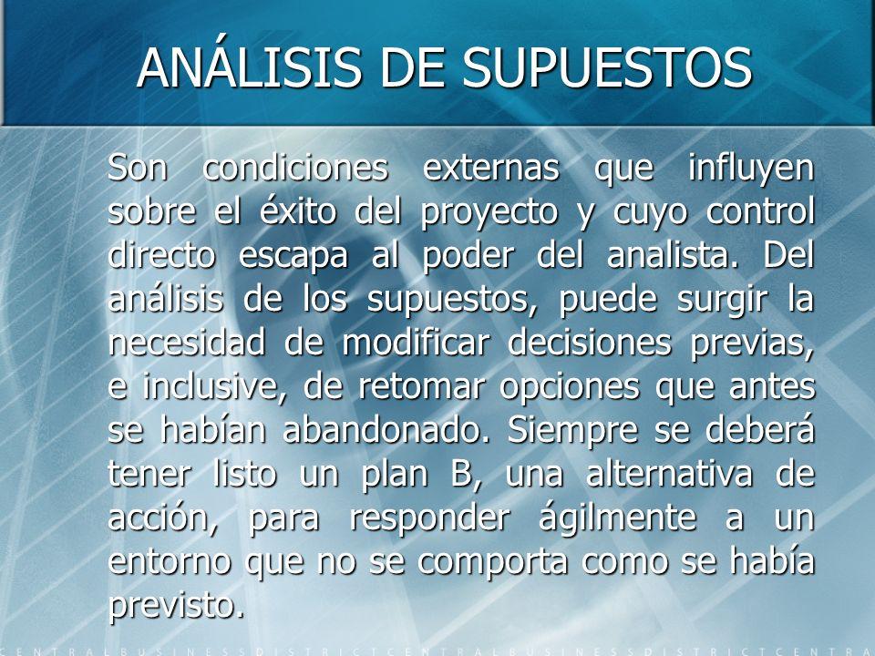 ANÁLISIS DE SUPUESTOS