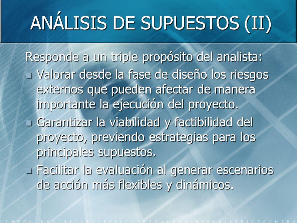 ANÁLISIS DE SUPUESTOS (II)