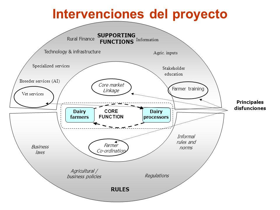 Intervenciones del proyecto