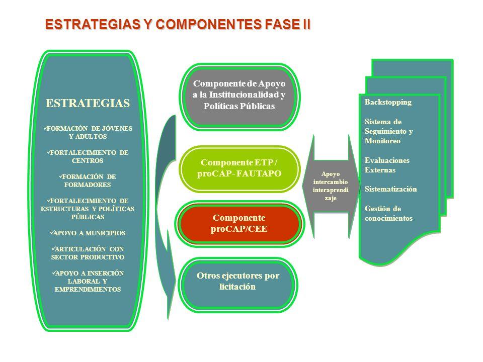ESTRATEGIAS Y COMPONENTES FASE II