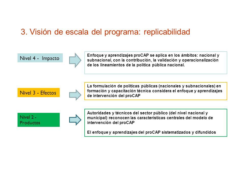 3. Visión de escala del programa: replicabilidad