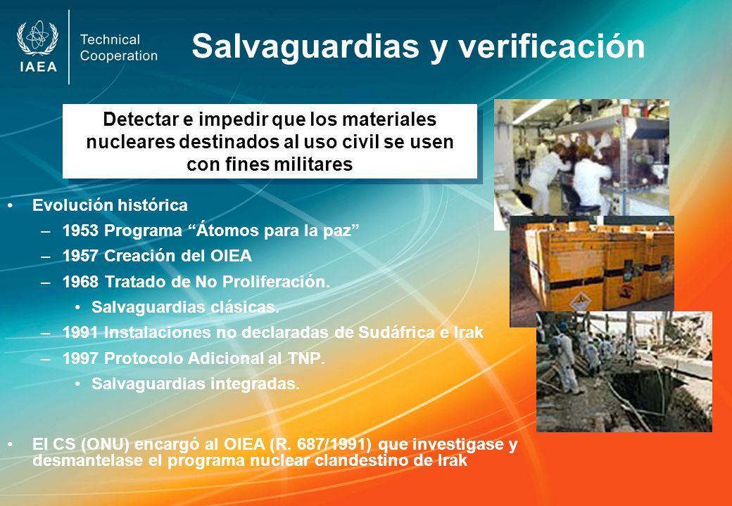 Salvaguardias y verificación