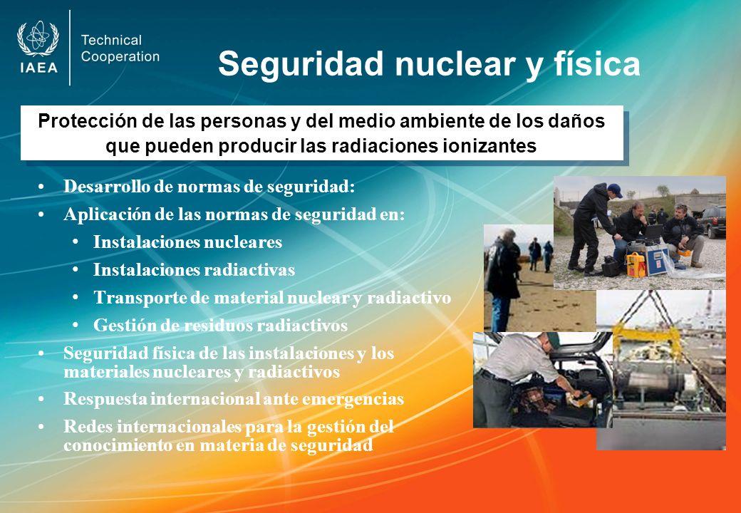 Seguridad nuclear y física