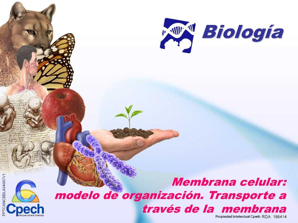 Biología Membrana celular: