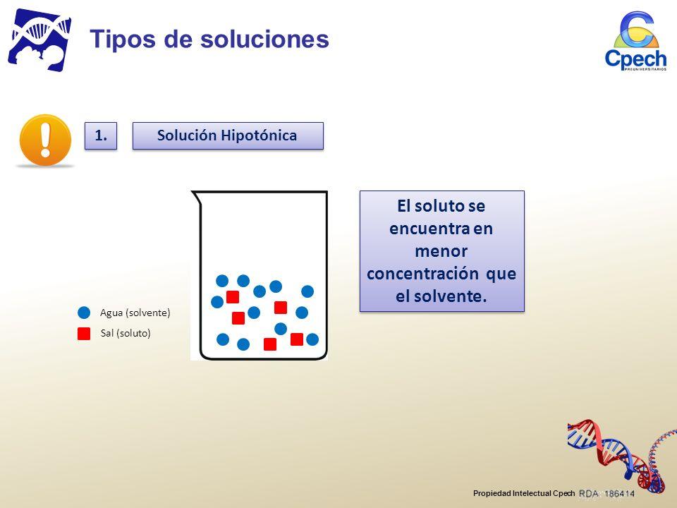 El soluto se encuentra en menor concentración que el solvente.