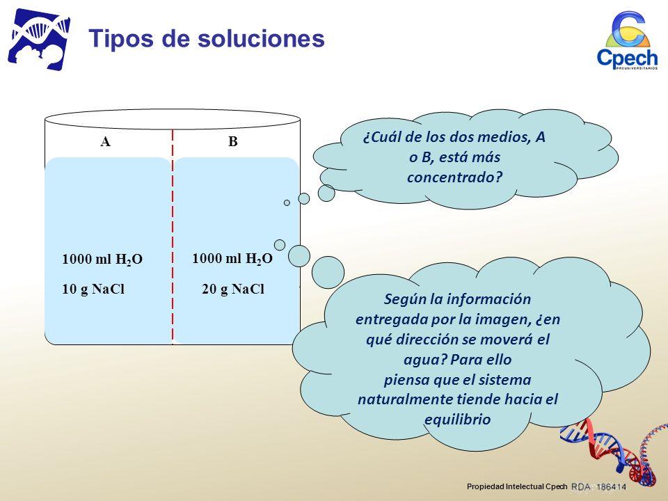 Tipos de soluciones A. B. 1000 ml H2O. 10 g NaCl. 20 g NaCl. ¿Cuál de los dos medios, A o B, está más concentrado