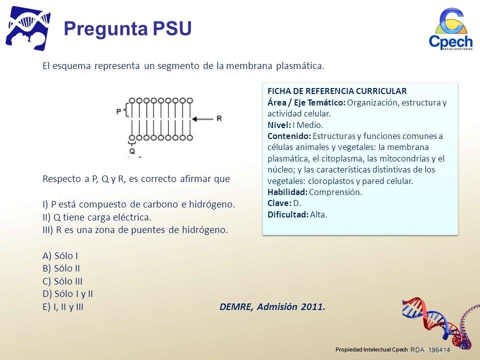 Pregunta PSU El esquema representa un segmento de la membrana plasmática. FICHA DE REFERENCIA CURRICULAR.