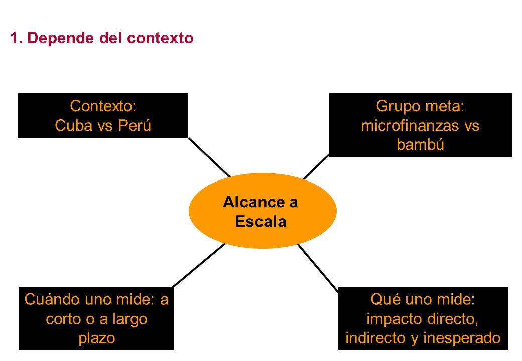 Grupo meta: microfinanzas vs bambú