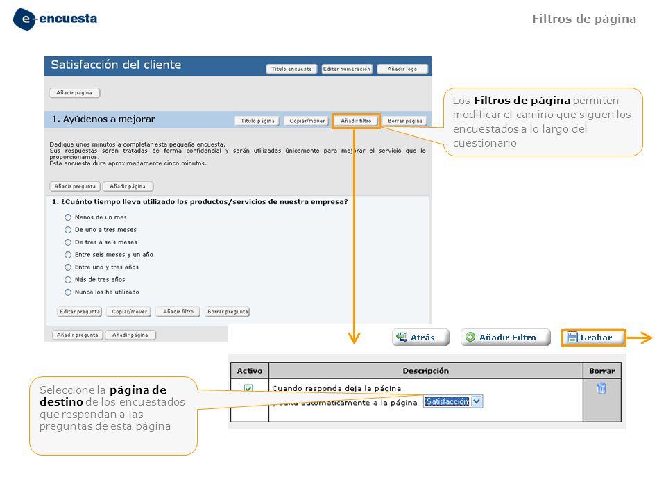 Filtros de página Los Filtros de página permiten modificar el camino que siguen los encuestados a lo largo del cuestionario.