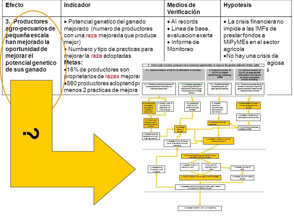 Efecto Indicador Medios de Verificación Hypotesis