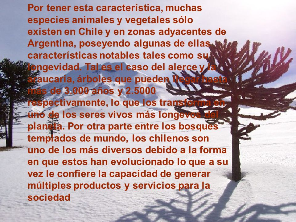 Por tener esta característica, muchas especies animales y vegetales sólo existen en Chile y en zonas adyacentes de Argentina, poseyendo algunas de ellas características notables tales como su longevidad.