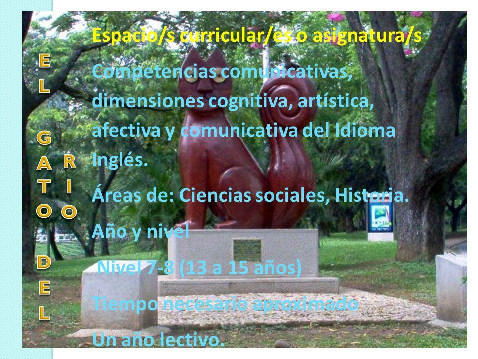 Espacio/s curricular/es o asignatura/s
