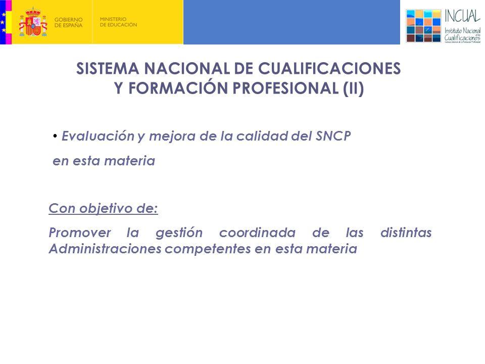 SISTEMA NACIONAL DE CUALIFICACIONES Y FORMACIÓN PROFESIONAL (II)