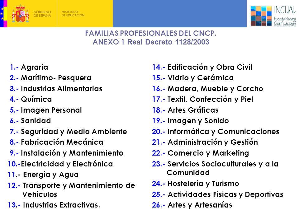 3. EL CATÁLOGO NACIONAL DE CUALIFICACIONES PROFESIONALES
