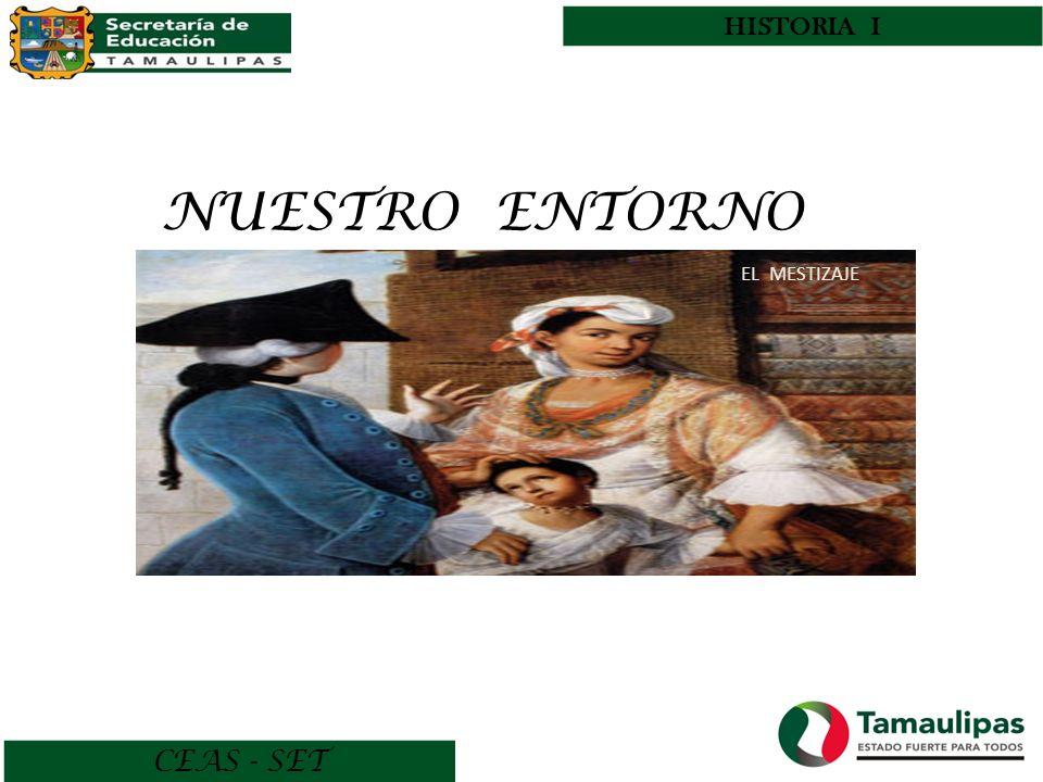 HISTORIA I NUESTRO ENTORNO EL MESTIZAJE CEAS - SET