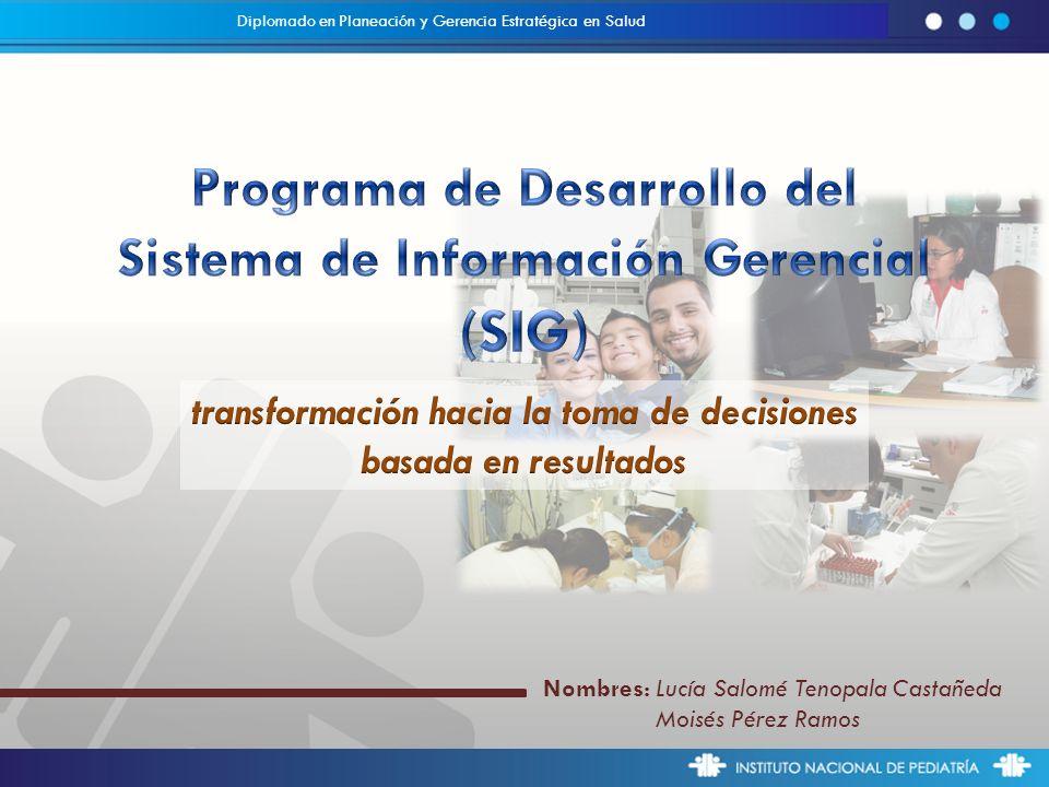 (SIG) Programa de Desarrollo del Sistema de Información Gerencial