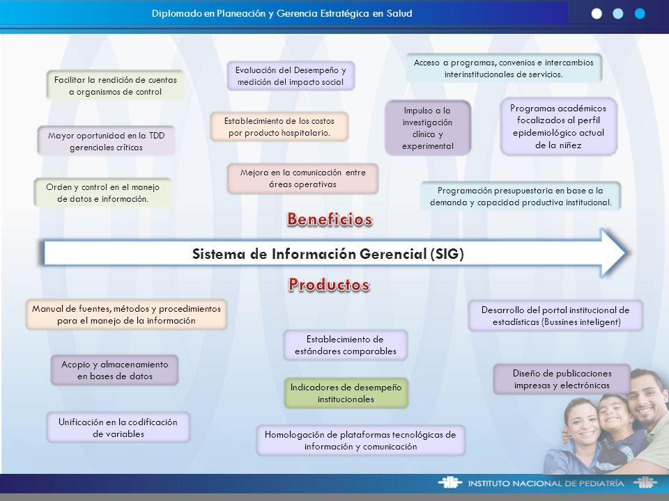 Sistema de Información Gerencial (SIG)
