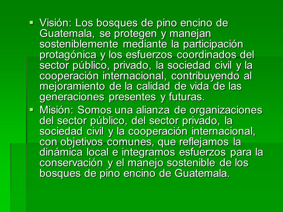 Visión: Los bosques de pino encino de Guatemala, se protegen y manejan sosteniblemente mediante la participación protagónica y los esfuerzos coordinados del sector público, privado, la sociedad civil y la cooperación internacional, contribuyendo al mejoramiento de la calidad de vida de las generaciones presentes y futuras.