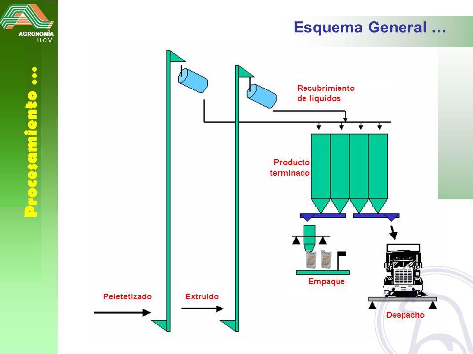 Procesamiento … Esquema General … Recubrimiento de líquidos