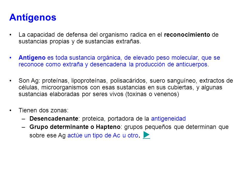 Antígenos La capacidad de defensa del organismo radica en el reconocimiento de sustancias propias y de sustancias extrañas.