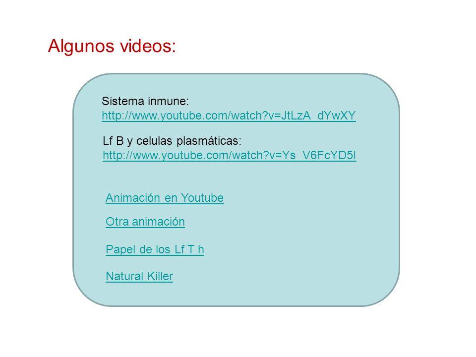 Algunos videos: Sistema inmune: