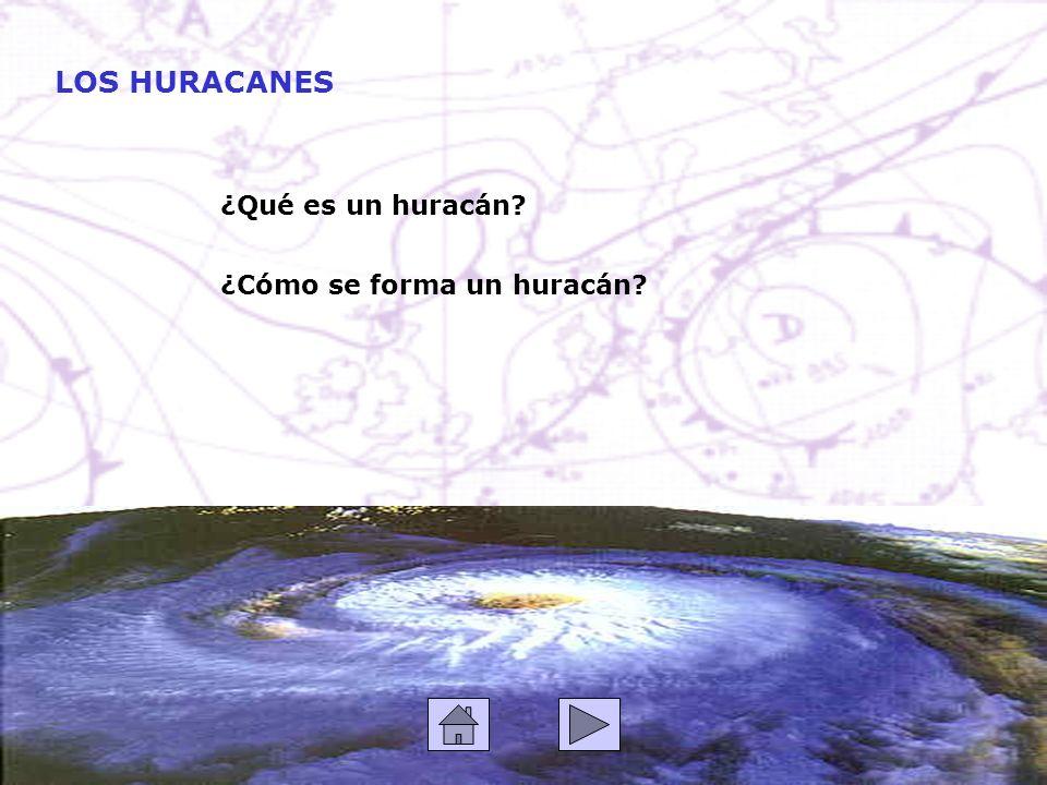 LOS HURACANES ¿Qué es un huracán ¿Cómo se forma un huracán
