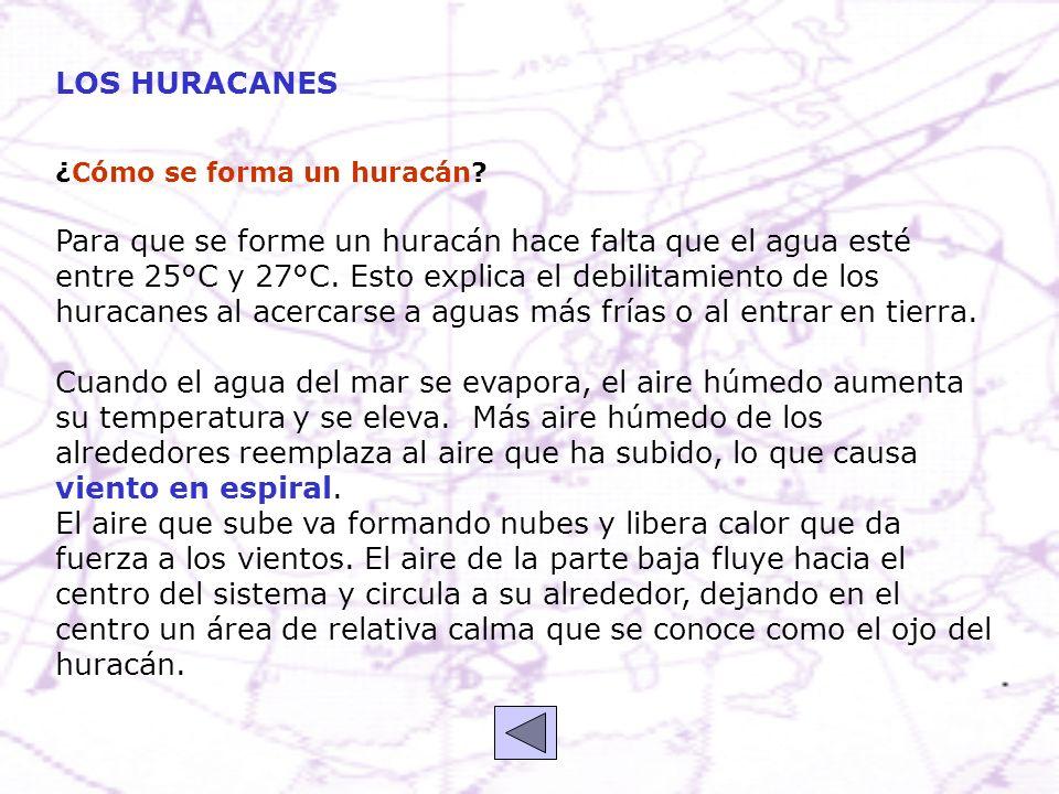 LOS HURACANES ¿Cómo se forma un huracán