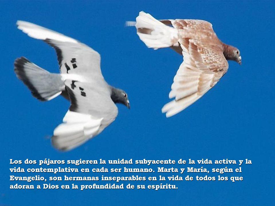 Los dos pájaros sugieren la unidad subyacente de la vida activa y la vida contemplativa en cada ser humano.