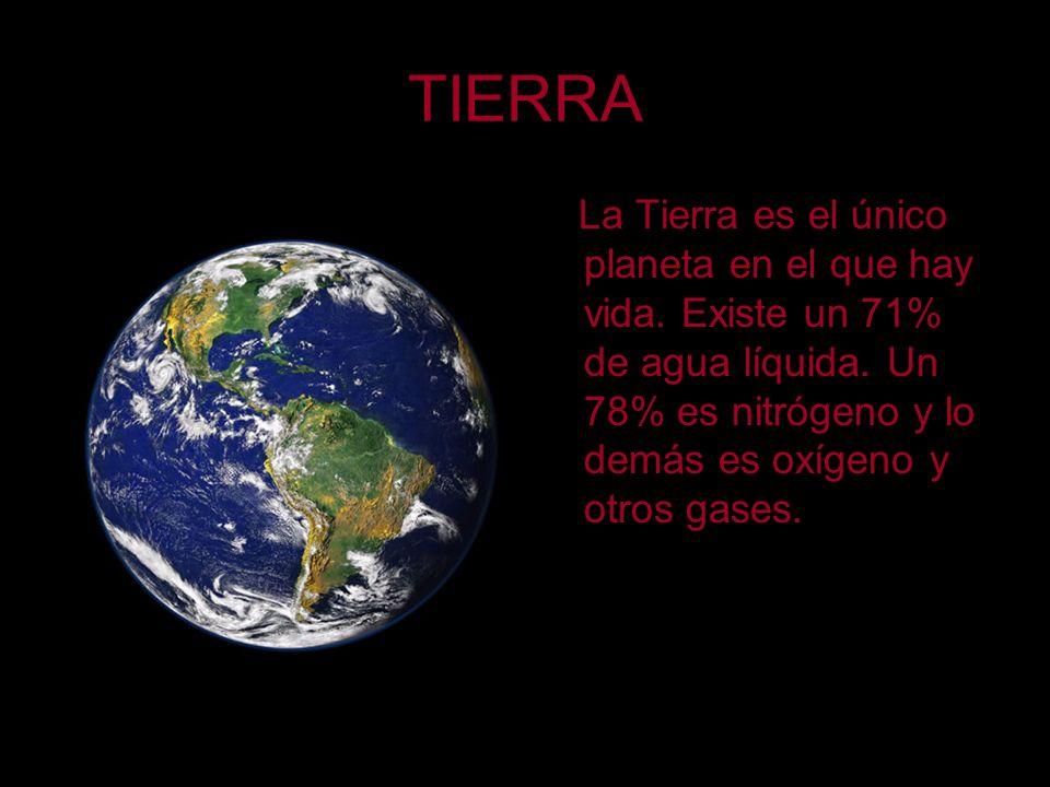 TIERRA La Tierra es el único planeta en el que hay vida.