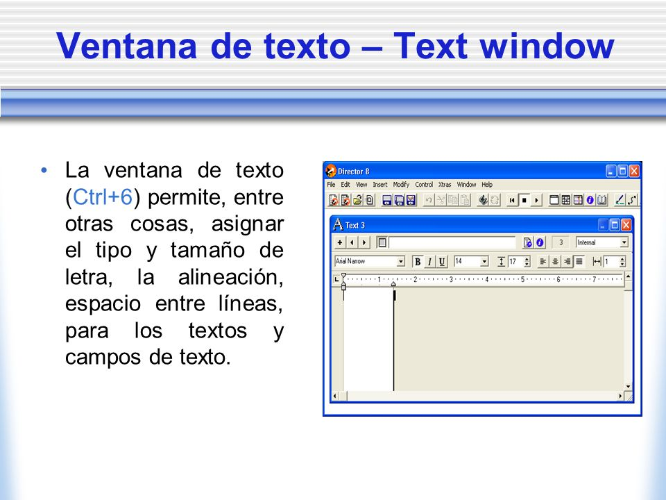 Ventana de texto – Text window