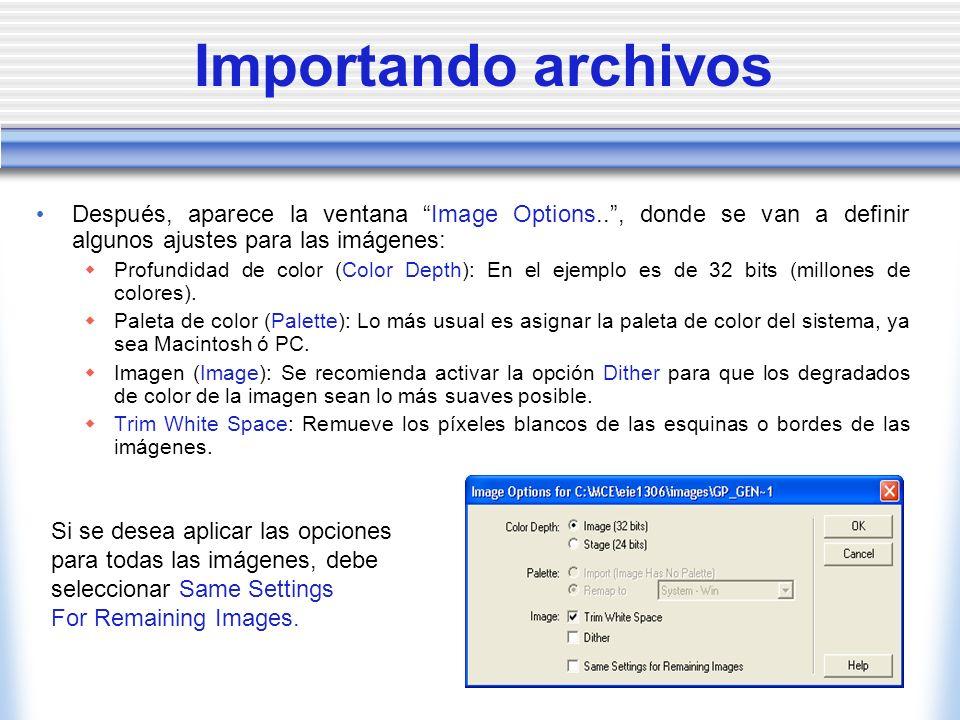Importando archivos Después, aparece la ventana Image Options.. , donde se van a definir algunos ajustes para las imágenes: