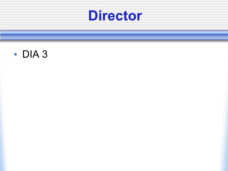 Director DIA 3