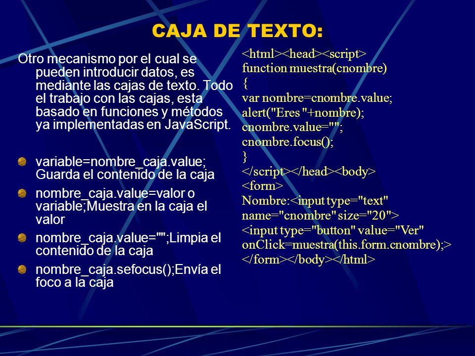 CAJA DE TEXTO: <html><head><script>