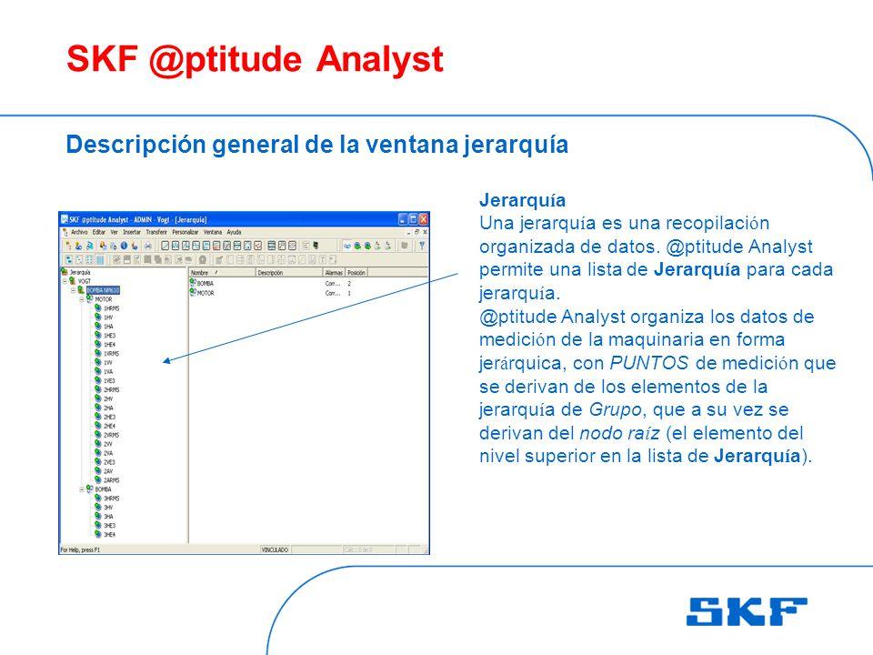 SKF @ptitude Analyst Descripción general de la ventana jerarquía