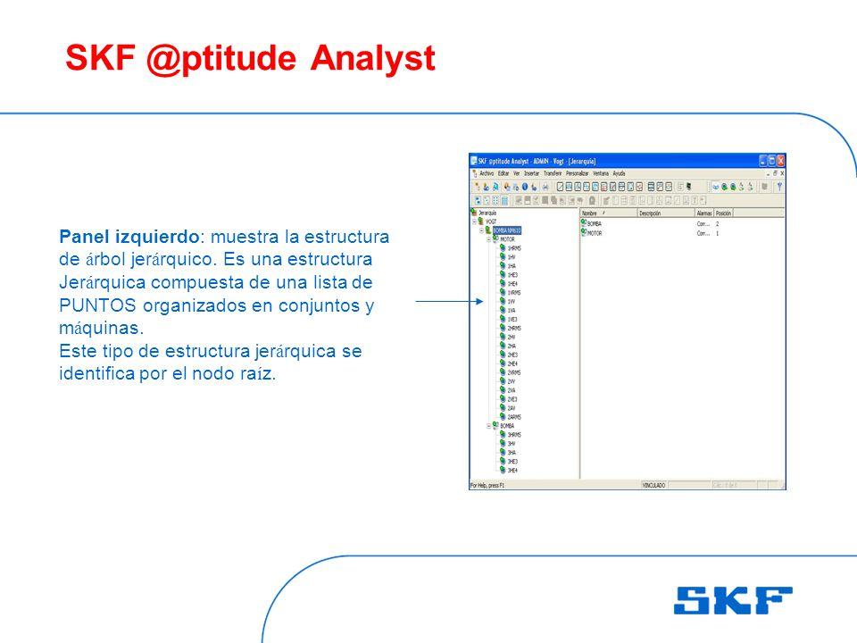 SKF @ptitude Analyst Panel izquierdo: muestra la estructura de árbol jerárquico. Es una estructura.