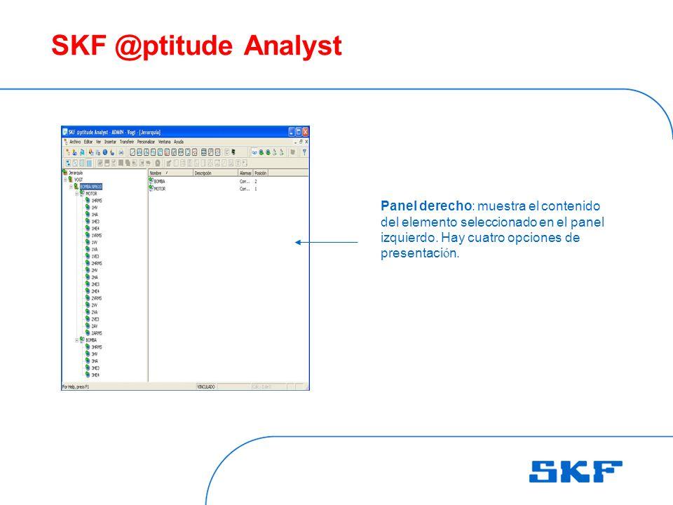 SKF @ptitude Analyst Panel derecho: muestra el contenido del elemento seleccionado en el panel.